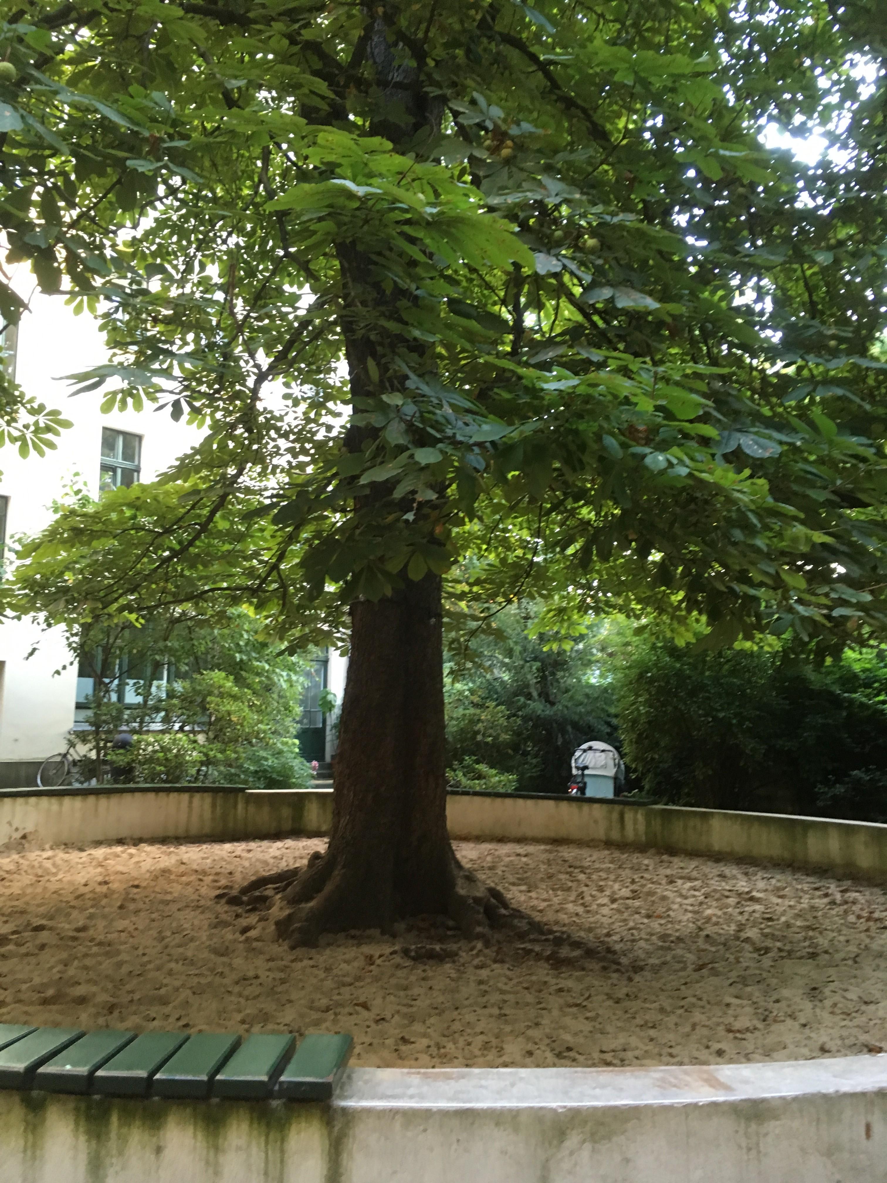Toffe hang outs in Berlijn om te bezoeken