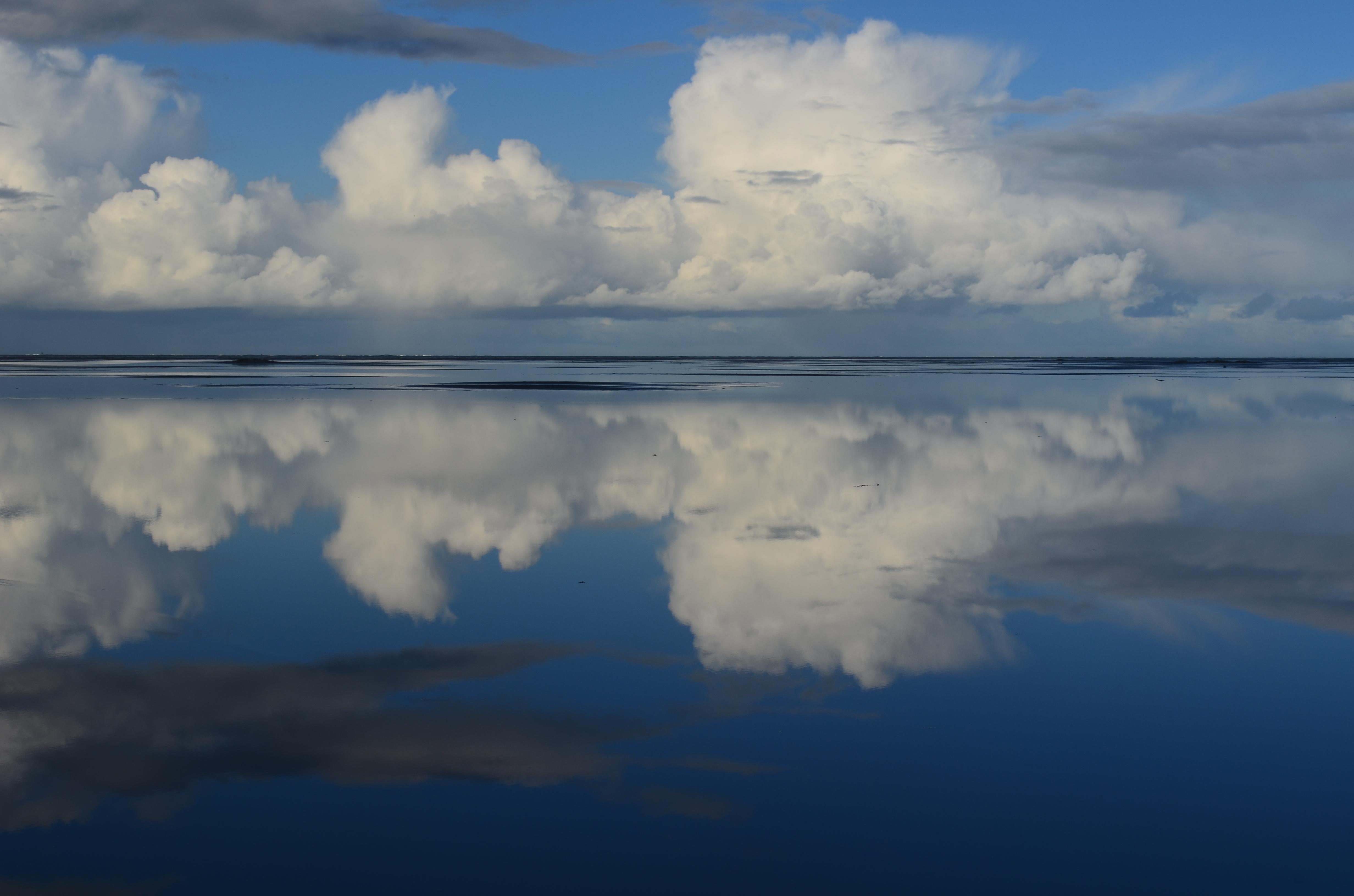 Ode aan Schiermonnikoog: de mooiste herinneringen aan het eiland