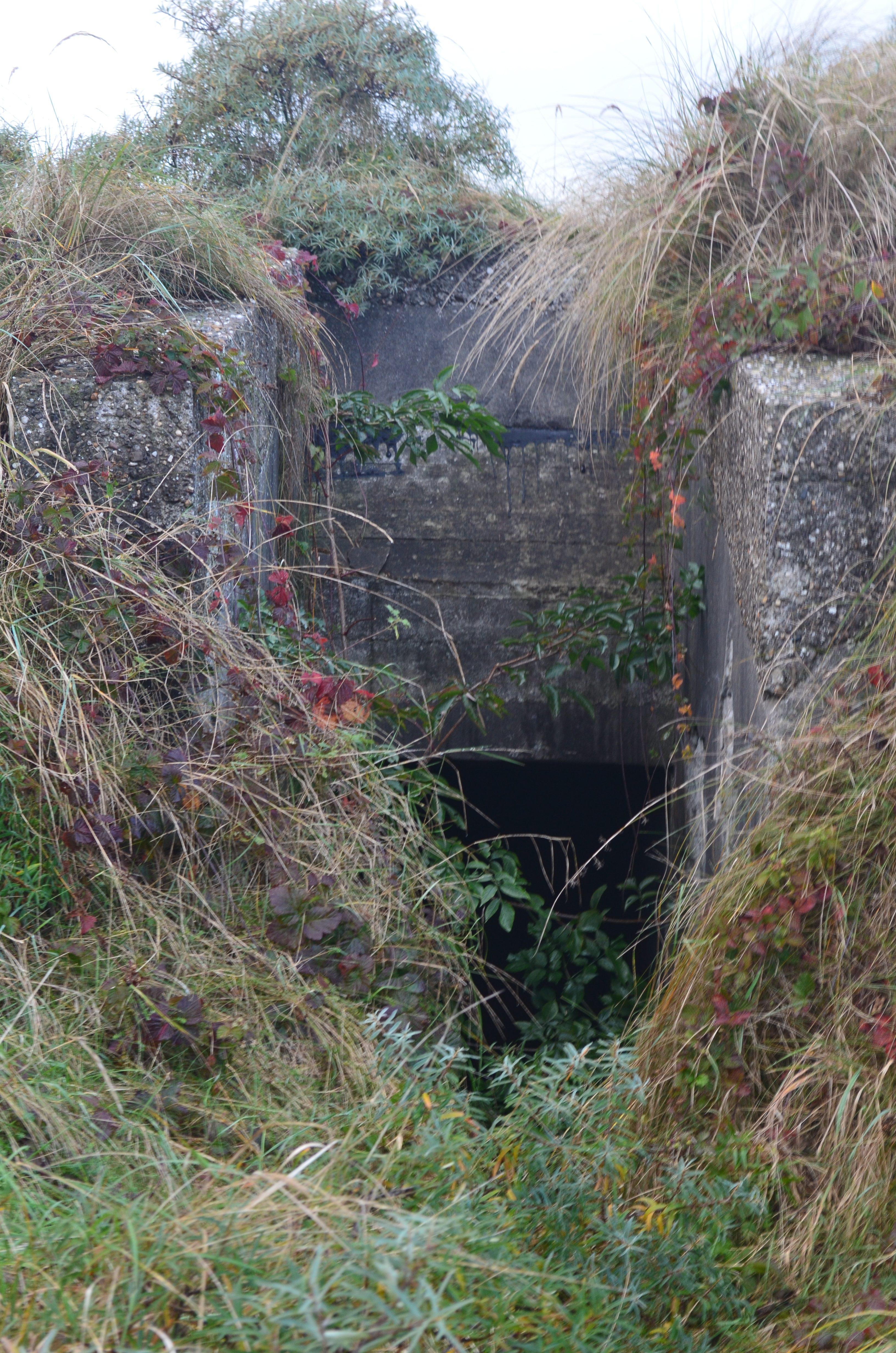 Travel Stories: van bunkers tot zwerven over het wad