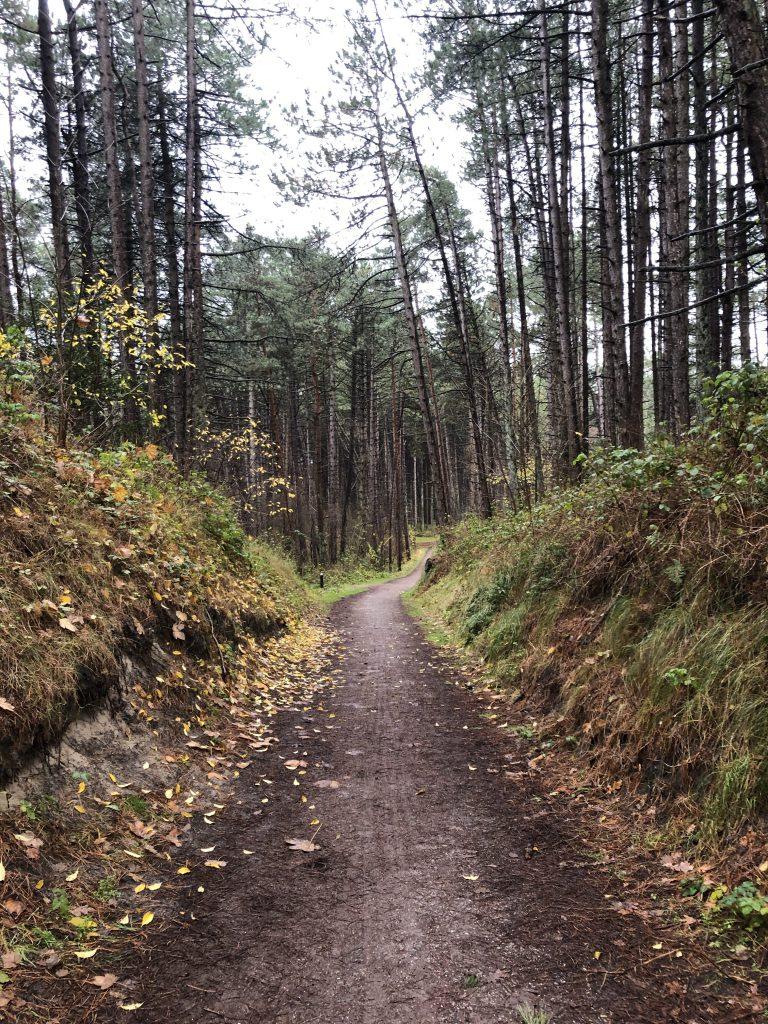 Nature escapes in Europa - fijne plekken in de natuur