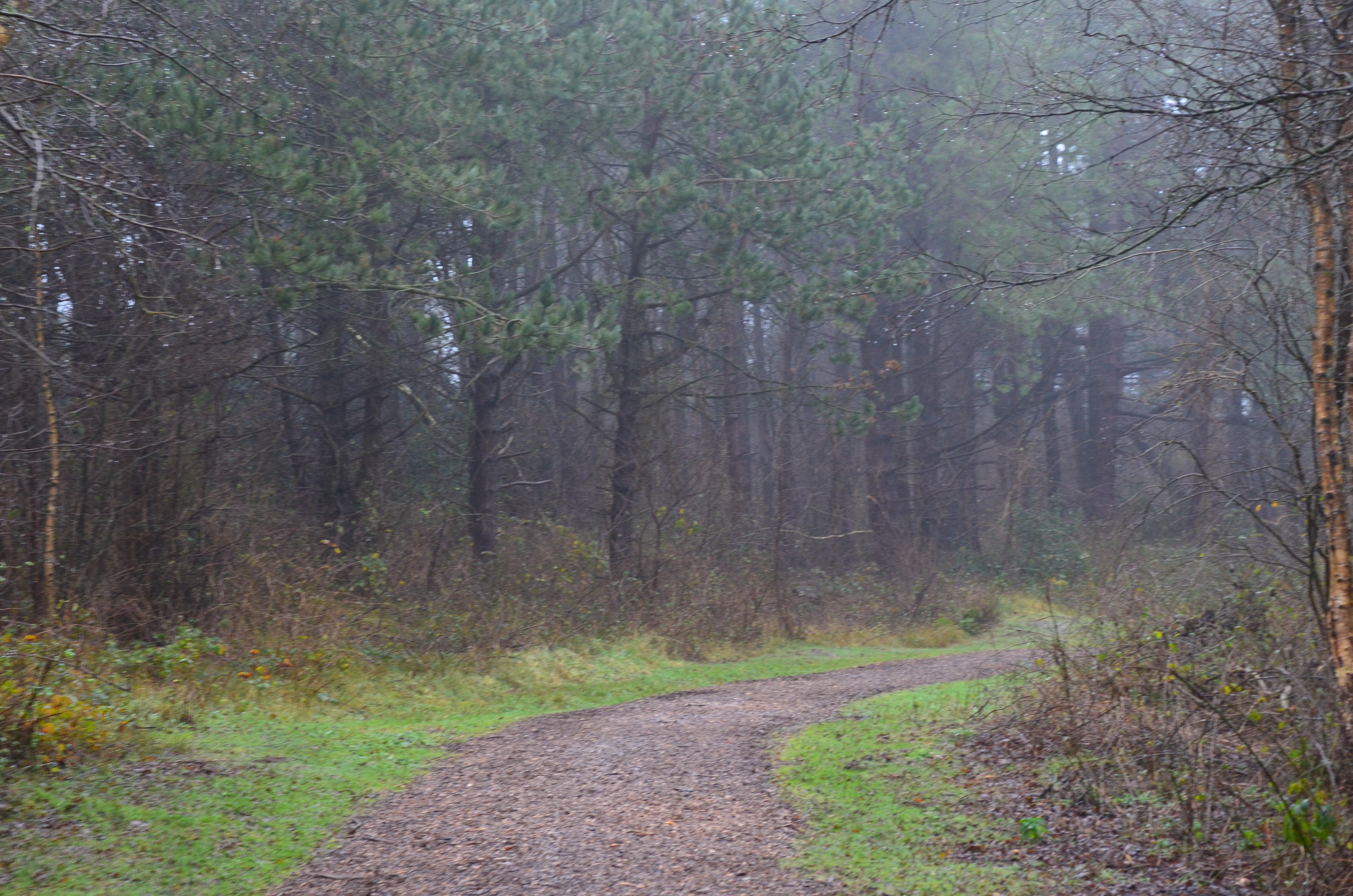 Inspiratie // 3x verschillende wandelingen op Schiermonnikoog