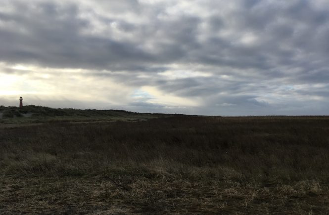 3x wandelen op Schiermonnikoog