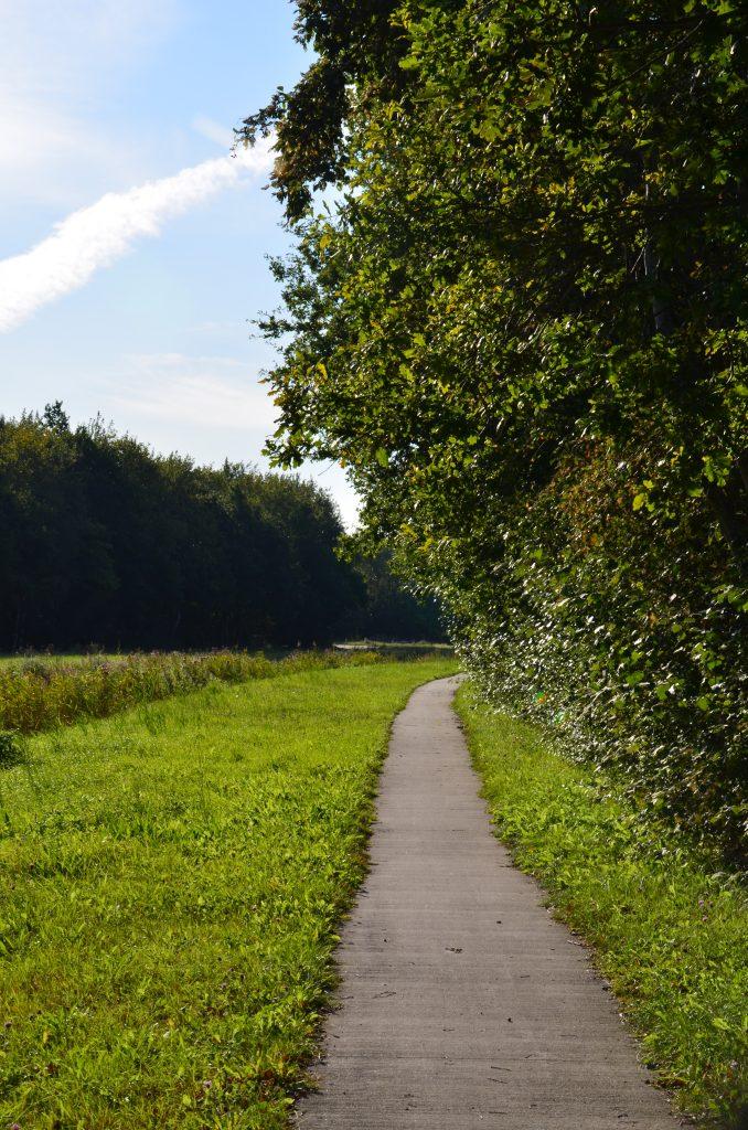 Op ontdekking in het Lauwersmeer Nationaal Park in Groningen