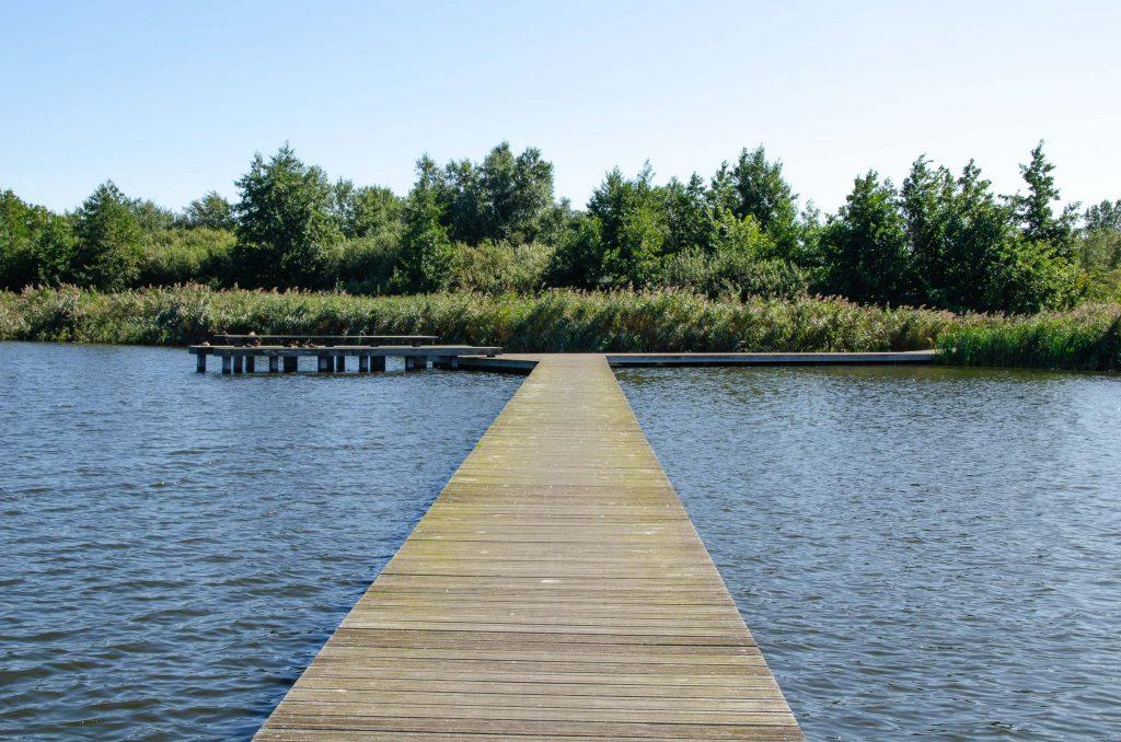 Wandelen Lauwersmeer